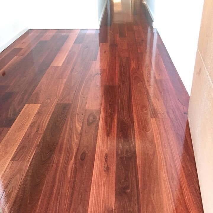 Stained Timber Floors